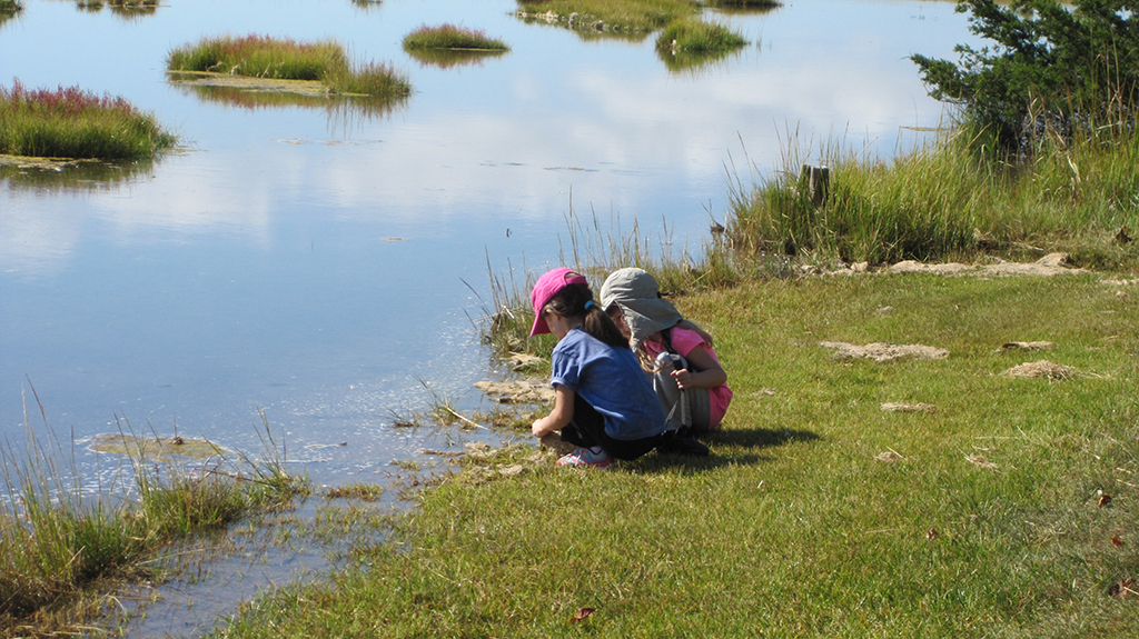 Children exploring the marsh