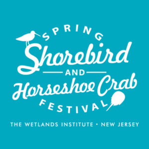 Spring Shorebird and Horseshoe Crab Festival