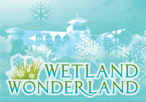 Wetland Wonderland
