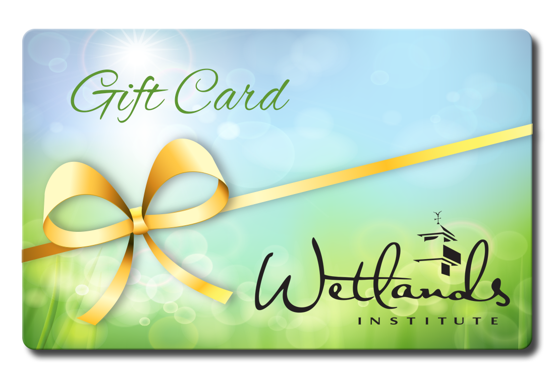Gift-card-picture-1