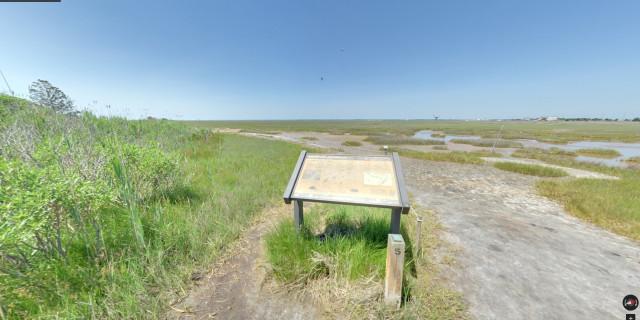 Salt-Marsh-Trail-02