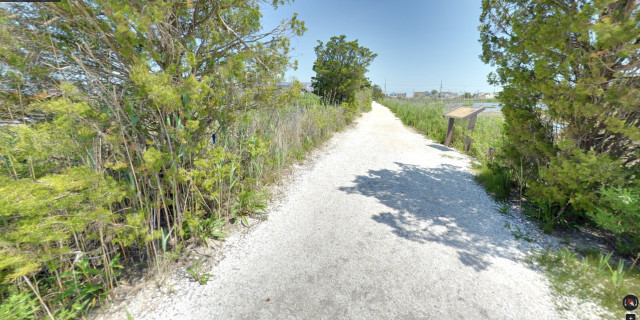 Salt-Marsh-Trail-05