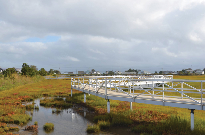 The elevated marsh walkway