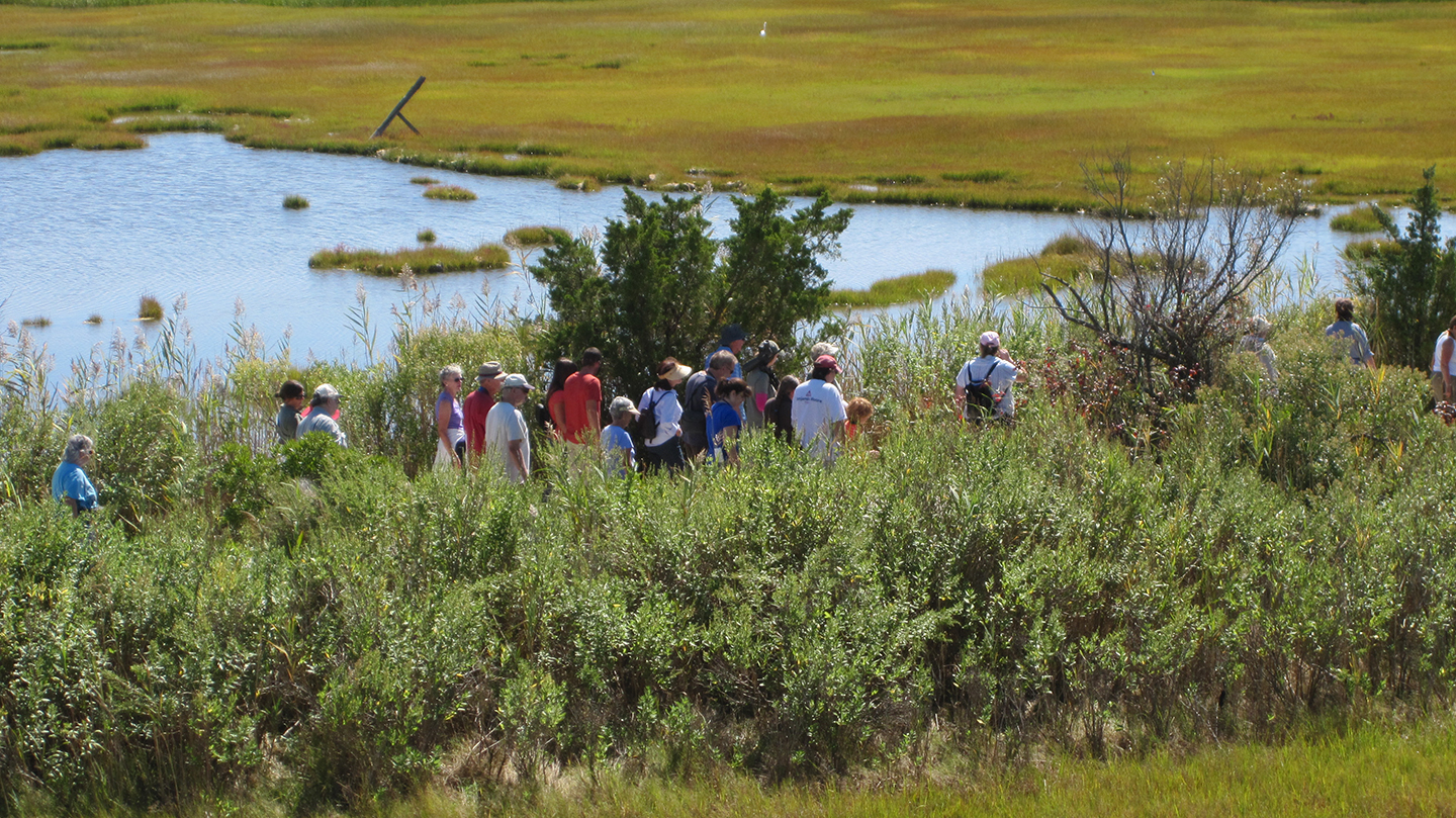 Walking down the Salt Marsh Trail