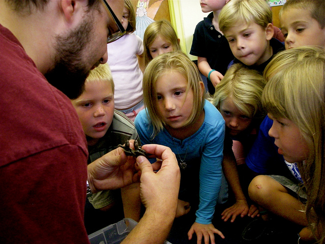 Children looking at terrapin hatchlings