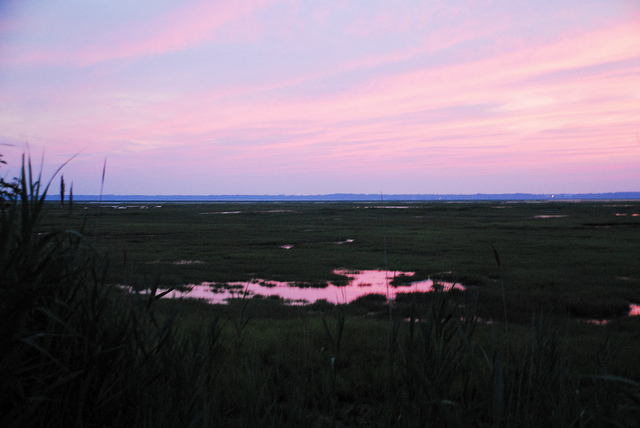 Marsh at sunset