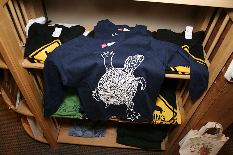 Children's Turtle Shirts