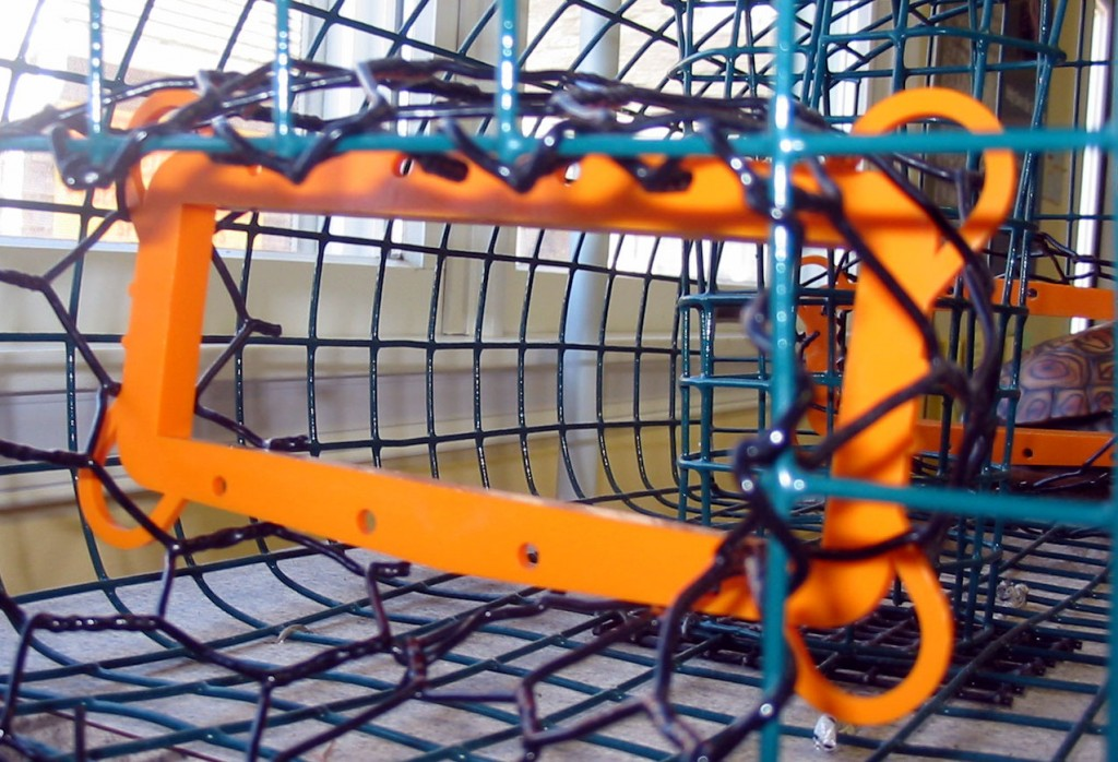 Terrapin excluder device on a commercial crab trap