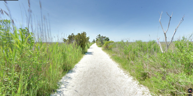 Salt-Marsh-Trail-01
