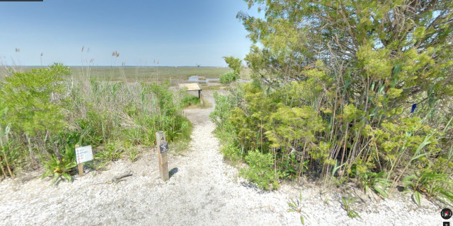 Salt-Marsh-Trail-04