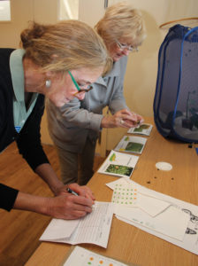 Monarch Ambassadors Julie McNulty and Lynn Matthews tag a Monarch butterfly and record data
